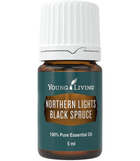 Schwarzfichte (Northern Lights Black Spruce ) 5ml - Young Living Young Living Essential Oils - 1