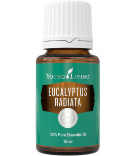 Eukalyptus Radiata 15ml - Young Living Young Living Essential Oils - 1